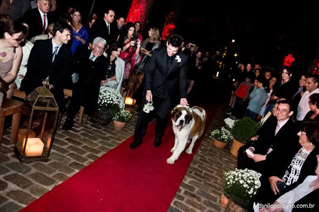 Pets-no-Casamento-06