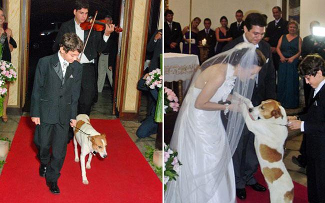 Pets-no-Casamento-10