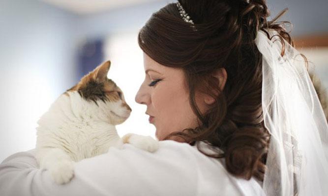 Pets-no-Casamento-11