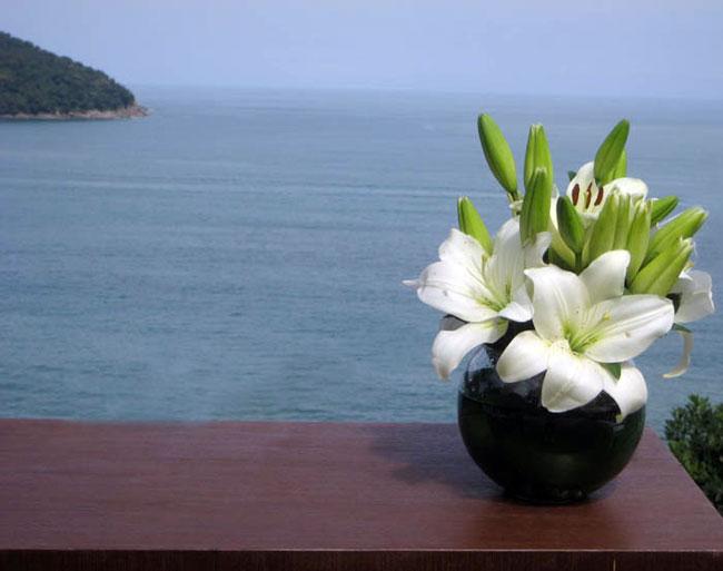 Casamento-na-praia-Camburi-08
